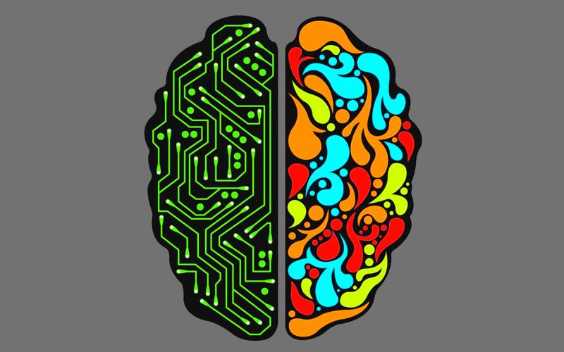 Tinc un cervell dretà o esquerrà?