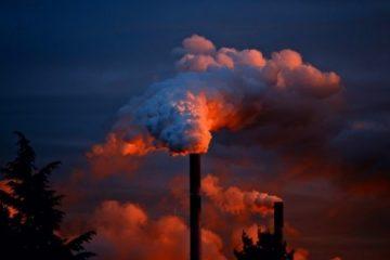 relació entre contaminació i demència